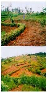 Photo Kementerian Pertanian
