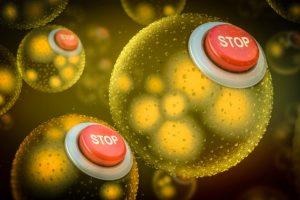 Wanita Tinggi dan Langsing Lebih Rentan Terhadap Penyakit Bakteri