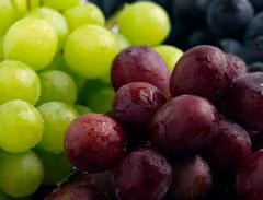 Manfaat Makan Anggur, Dapat Menyembuhkan Nyeri Lutut Kita