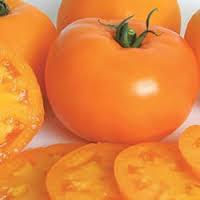 Kandungan Gizi dan Komposisi dari Tomat Orange